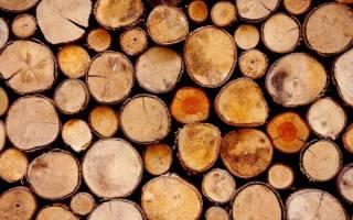 Самая прочная древесина в мире