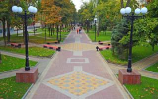 Как выбрать тротуарную плитку для двора