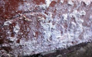 Что такое высолы на кирпиче