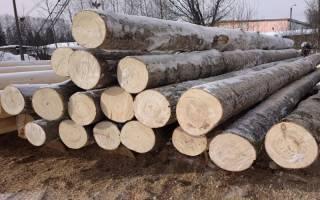 Осина свойства древесины и применение