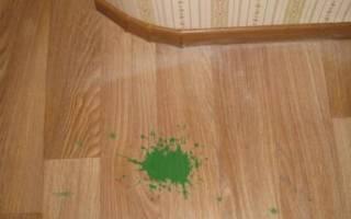 Как очистить краску с линолеума?