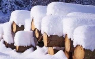 Можно ли строить дом из бруса зимой?