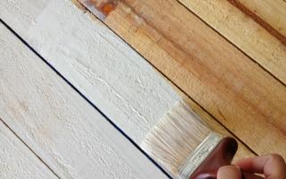 Чем лучше покрасить вагонку внутри дома?