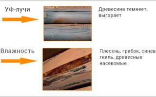 Можно ли пропитывать сырую древесину антисептиком?